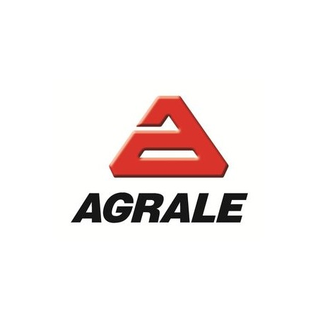 AGRALE ARGENTINA S.A.